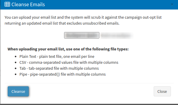 Email Campaigns - cleanse emails
